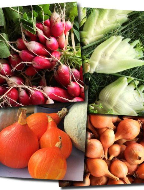 panier-de-legumes-bio